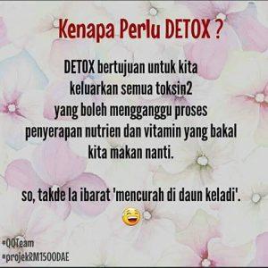 Apa Itu Detox